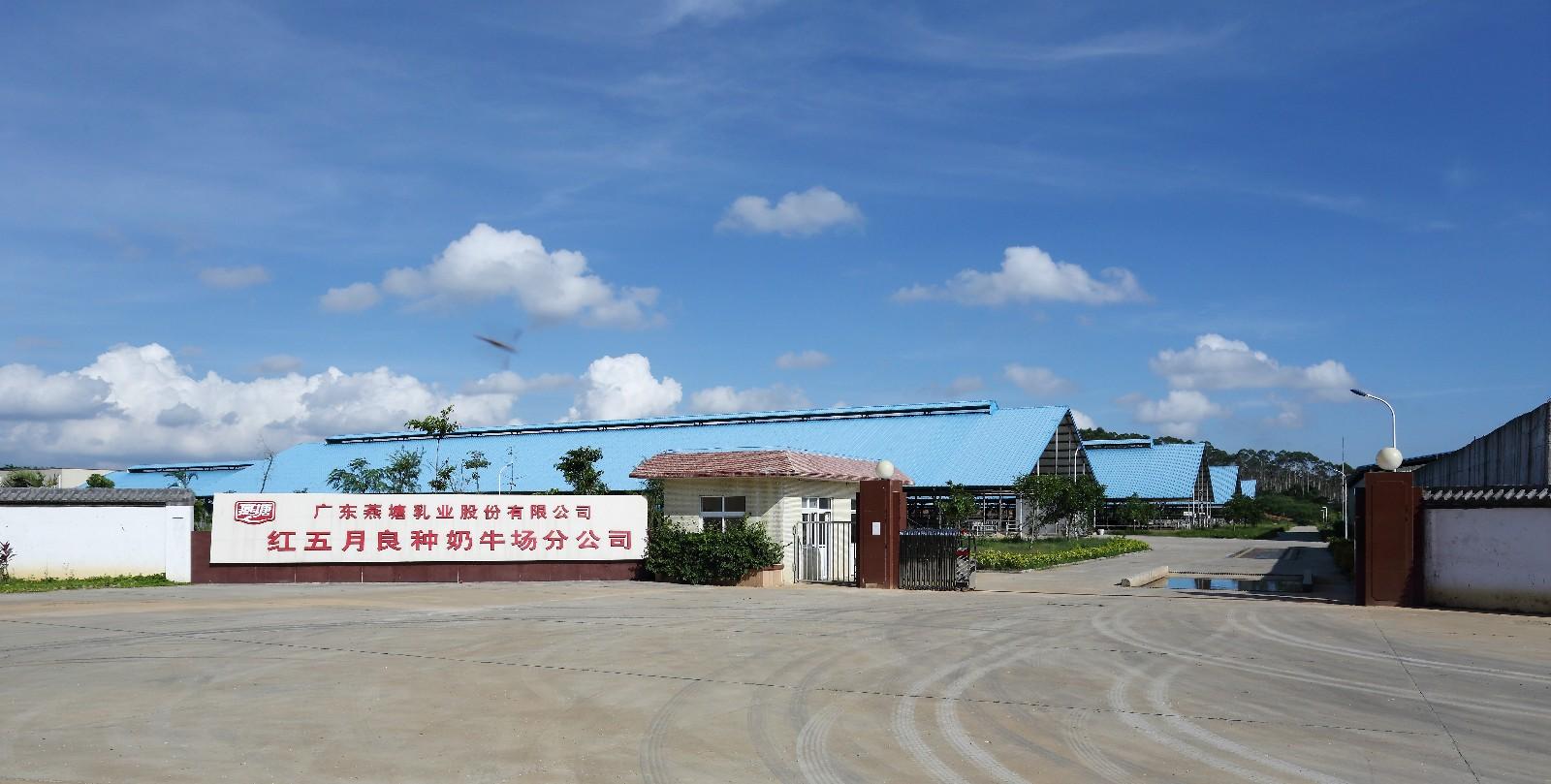 广东省菜篮子工程阳东燕塘牛奶基地